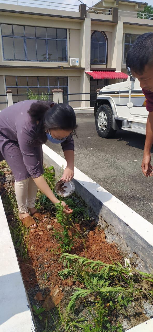 Officer on Special Duty, MSLSA plating tree sampling at ADR Centre, Mawkasinag