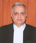 Hon'ble Mr Justice Prafulla C. Pant